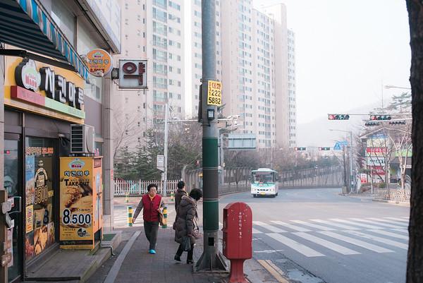 grandma Korea 2015